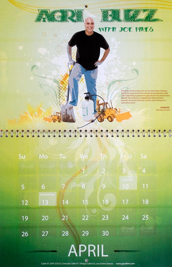 Gayelle The Channel Calendar for 2008